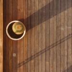 חיפו עץ - מלון קרלטון דקים (5)